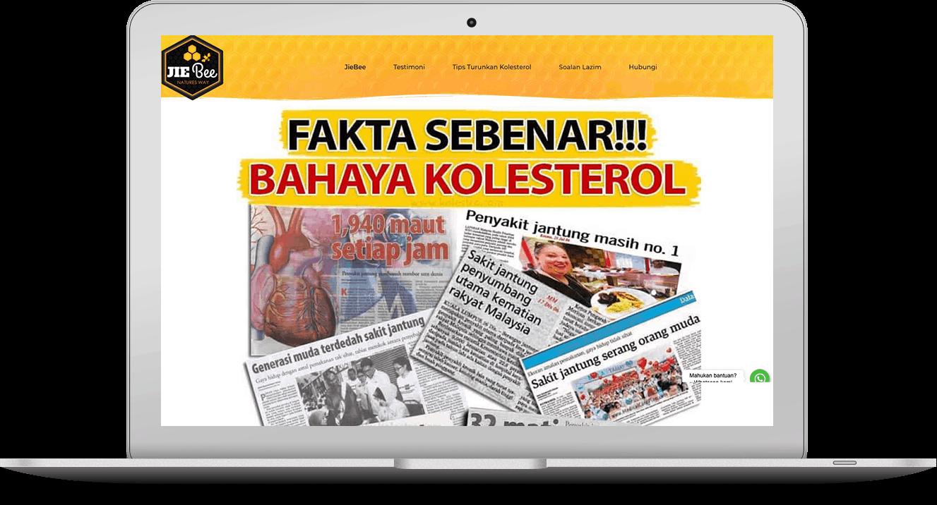 website kolestro.com